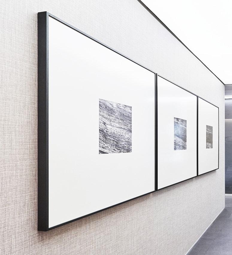 """Composición de imágenes del proyecto """"Troncos de Rosa e Barros"""", de Kelly Lima"""