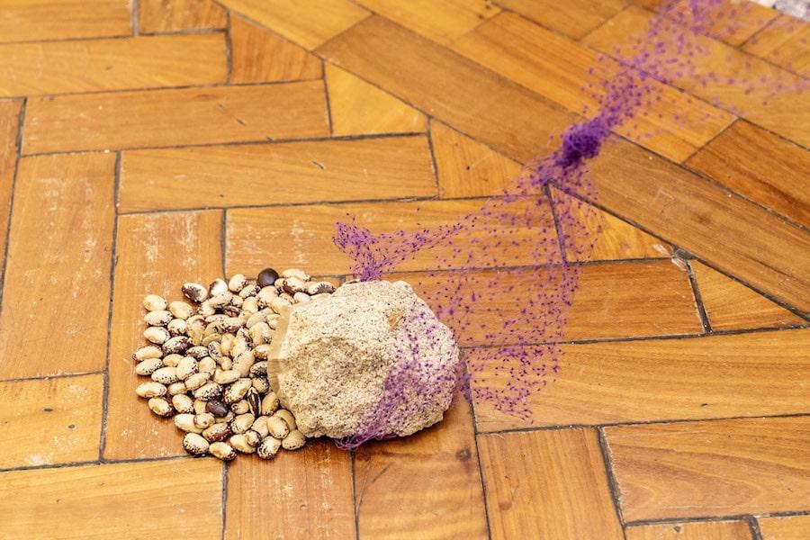 Exposição Uso da Imagem no Rio de Janeiro